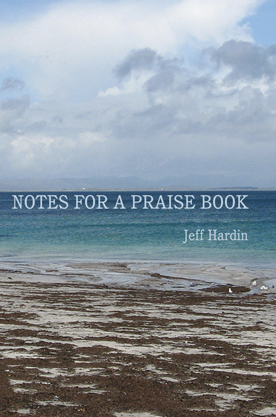 Notes for a Praise Book